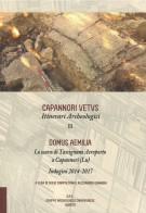 <h0>Domus Aemilia <Span><i>Lo scavo di Tassignano Aeroporto a Capannori <span>Indagini 2014-2017 </i></span></h0>