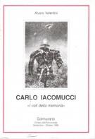 Carlo Iacomucci <span>'I voli della memoria'
