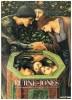 Burne-Jones dal preraffaellismo al simbolismo