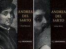 Andrea Del Sarto 2 Voll.:Vol. I Text and Illustrations Vol. II Catalogue Raisonné