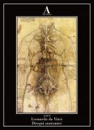 <h0>Disegni anatomici <span><i>Leonardo Da vinci</i></span></h0>