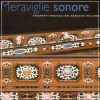 Meraviglie sonore Strumenti musicali del barocco italiano