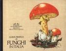 <h0><span><i>Guida pratica ai </i></span>Funghi <span>in Italia</span></h0>