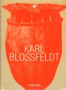 Karl Blossfeldt <span> 1865-1932</span>