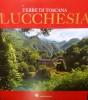 Terre di Toscana Lucchesia