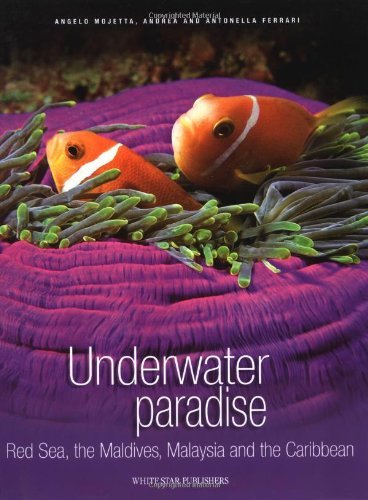 Underwater Paradise Red Sea, the Maldives, Malaysia and the Carribean (Secret of the Sea)