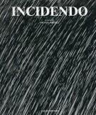 <h0>Incidendo <span><em>Ricognizione sull'incisione italiana contemporanea</em></span></h0>
