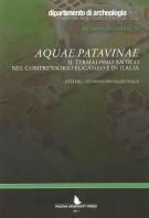 <h0>Aquae Patavinae <span><i>Il termalismo antico nel comprensorio euganeo e in Italia <span>Atti del I convegno nazionale</i></Span></h0>