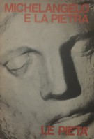 Michelangelo e la Pietra Le Pietà