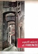 <H0>Aspetti Minori di Firenze</H0>