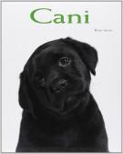 <h0>Cani</h0>