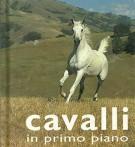 Cavalli <span>in primo piano</span>